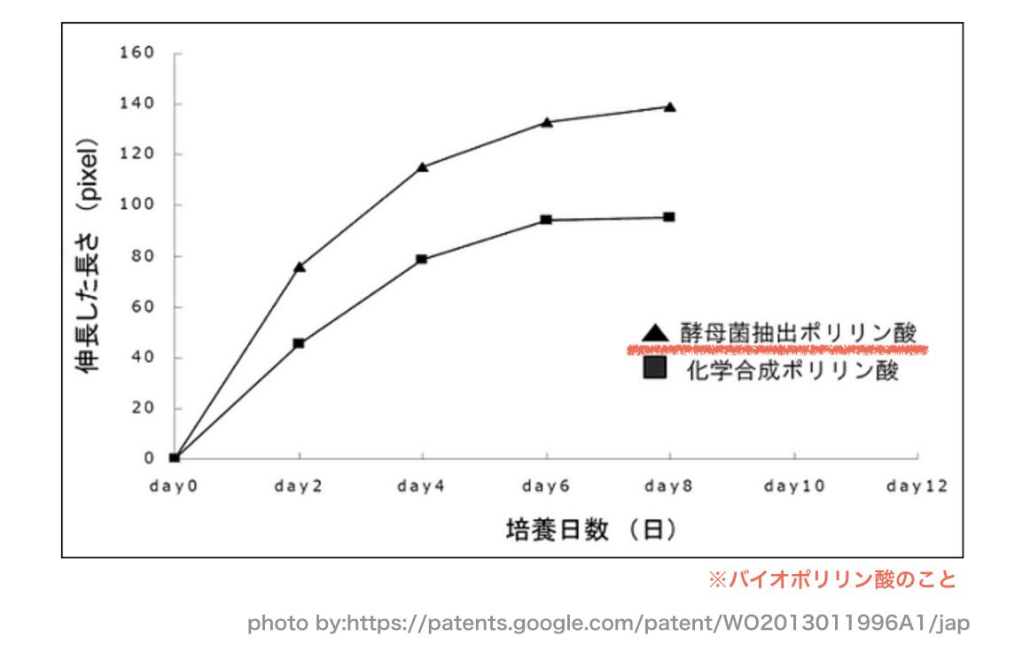 バイオポリリン酸の研究データ